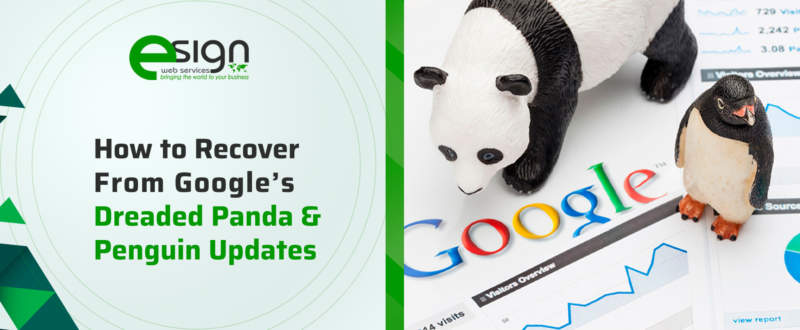 How to Recover from Google's Dreaded Panda and Penguin Updates