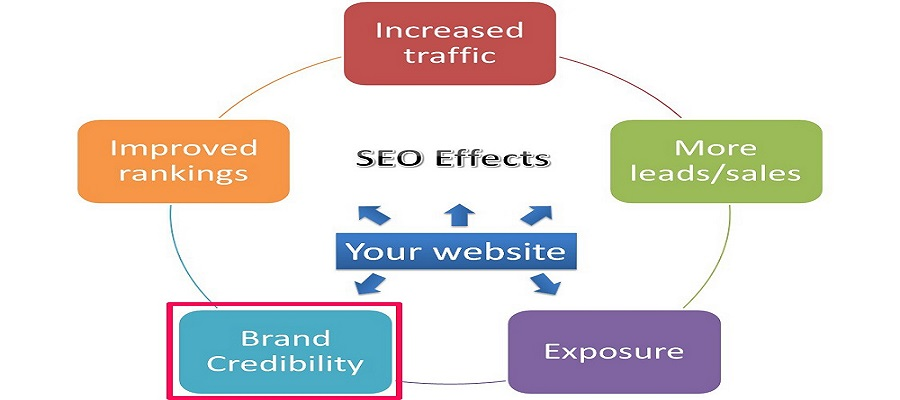 Improves your site's authority and credibility