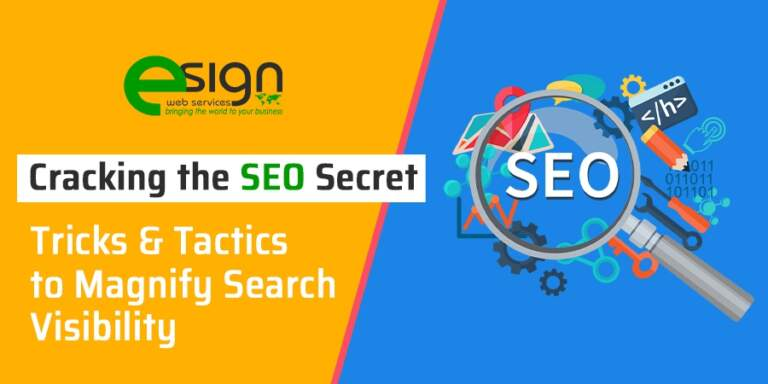 Cracking the SEO Secret Tricks & Tactics to Magnify Search Visibility