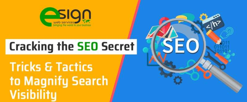 Cracking the SEO Secret: Tricks & Tactics to Magnify Search Visibility